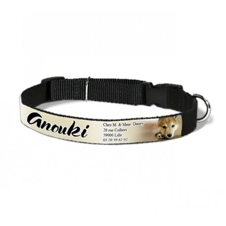 Collier pour animaux